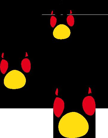 fuchsspur